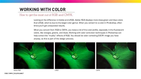 Adobe RGB and sRGB and color gamut